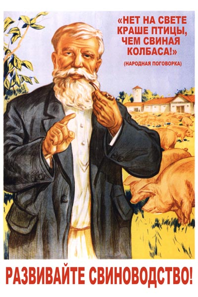 011. Советский плакат: Развивайте свиноводство!