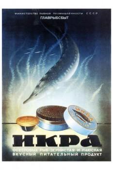 491. Советский плакат: Икра осетровых рыб ... вкусный, питательный продукт