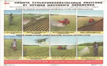 59. Плакат по гражданской обороне: Защита сельскохозяйственных растений от оружия массового поражения