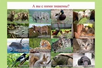 105. Плакат для детского сада: А вы с ними знакомы? (1)