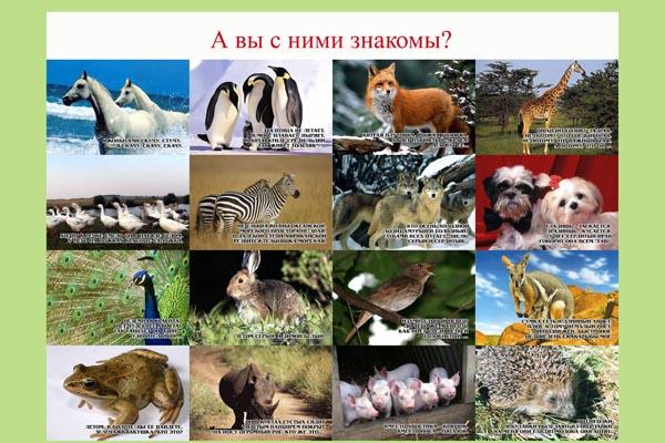 106. Плакат для детского сада: А вы с ними знакомы? (2)