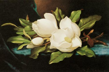 065. Живопись: Две орхидеи на фоне горного пейзажа. Художник Мартин Джонсон Хед