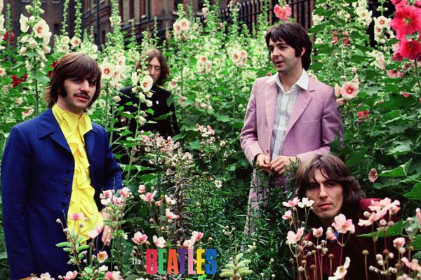 052. Постер: Участники группы The Beatles среди цветов