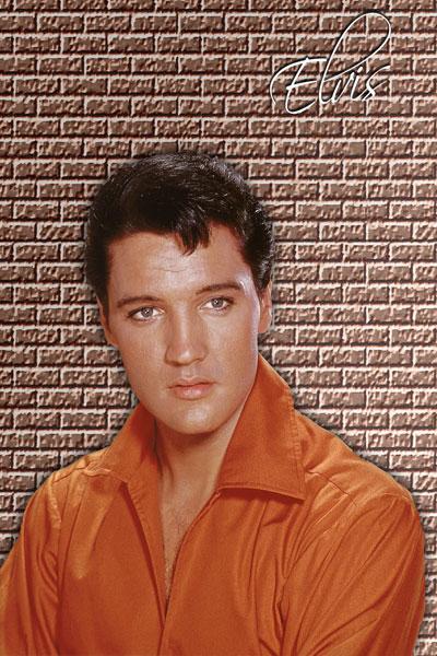351. Постер: Elvis Presley на фоне кирпичной стены