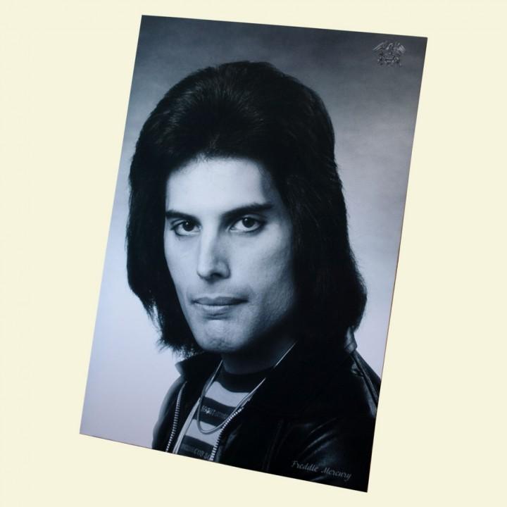 10. постер Freddie Mercury