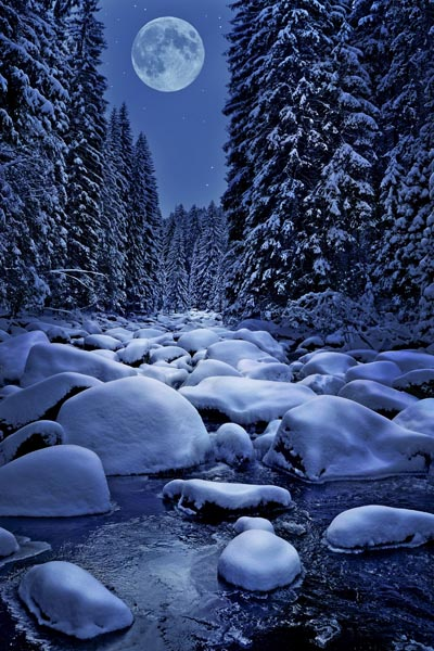 012. Пейзаж: Тихая зимняя ночь