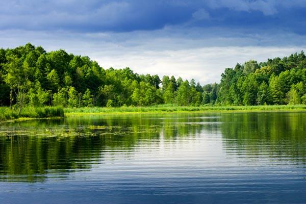 021. Пейзаж: Большое озеро