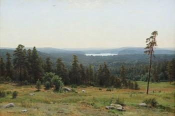 047. Пейзаж: Лесные дали