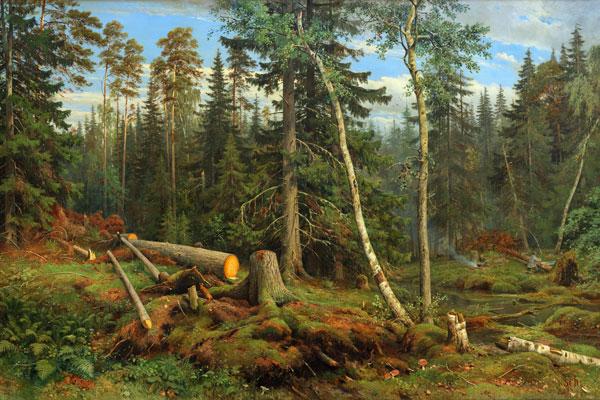 063. Пейзаж: Рубка леса