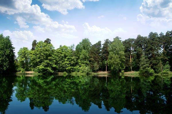 064. Пейзаж: На пруду