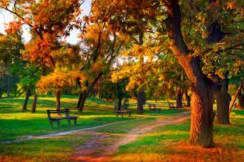 076. Пейзаж: Тропа в парке