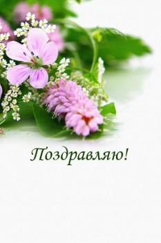 003. Поздравление: Нежно-сиреневые цветы