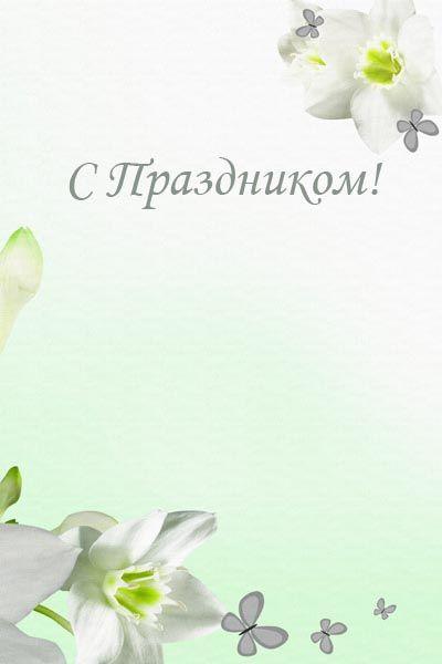 005. Поздравление: Цветы с бабочками