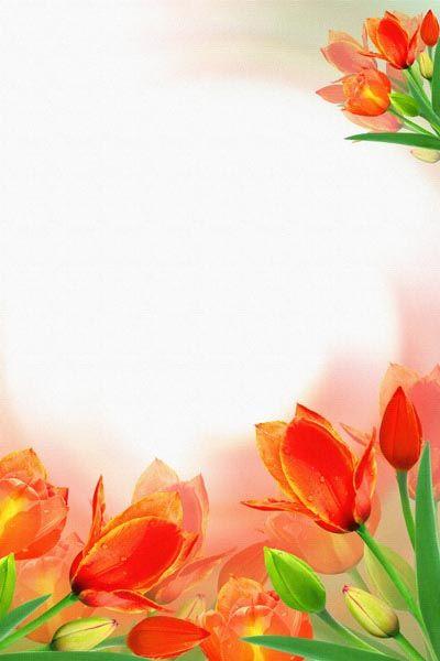 021. Поздравление: Рамка из красных тюльпанов