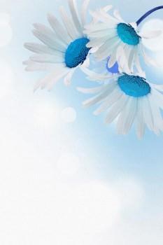 042. Поздравление: Синяя ромашка