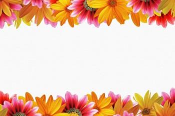 063. Поздравление: Рамка из разноцветных ромашек