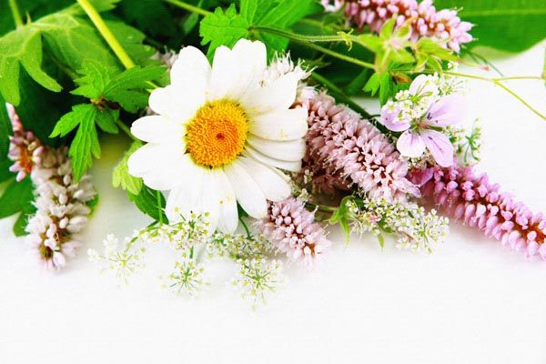 078. Поздравление: Букет из цветов