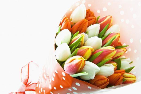 094. Поздравление: Букет разноцветных тюльпанов