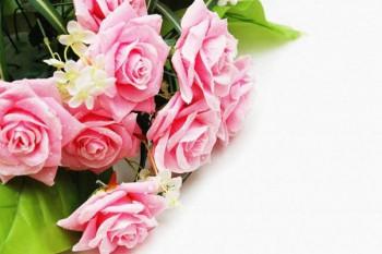 108. Поздравление: Розы