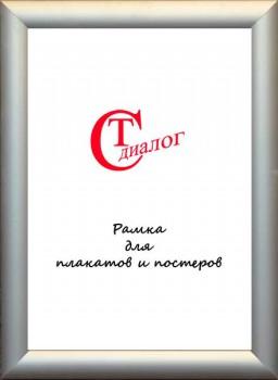 30. Рамка для плакатов и постеров. Алюминий серебро широкая с а/блик. пластиком