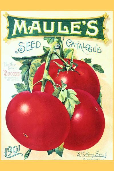 "002. Ретро плакат западных стран: ""Tomatoes"" Seed Catalog Cover"