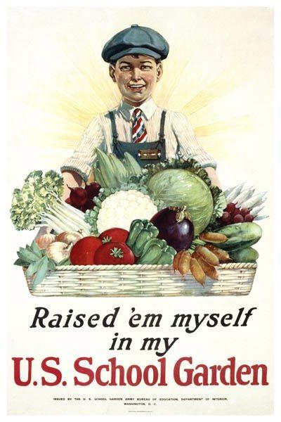 029. Ретро плакат западных стран: U.S. School Garden. Poster