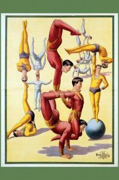 040. Ретро плакат западных стран: Poster of Stock Acrobats