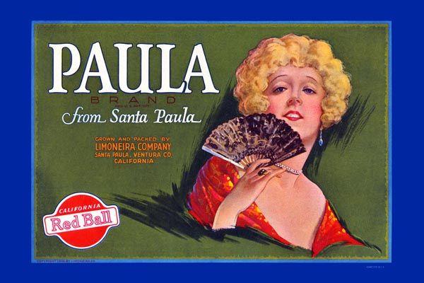 158. Иностранный плакат: Paula brand