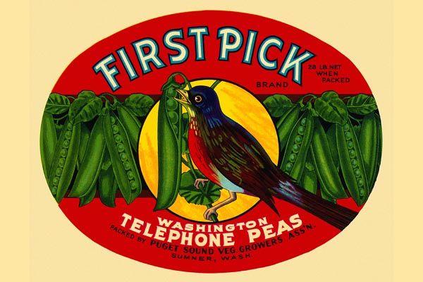 162. Иностранный плакат: First Pick brand