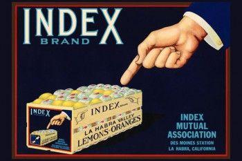 165. Иностранный плакат: Index brand