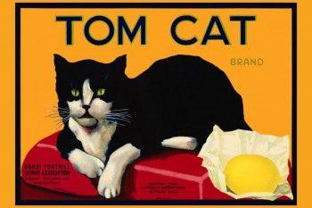 166. Иностранный плакат: Tom Cat brand