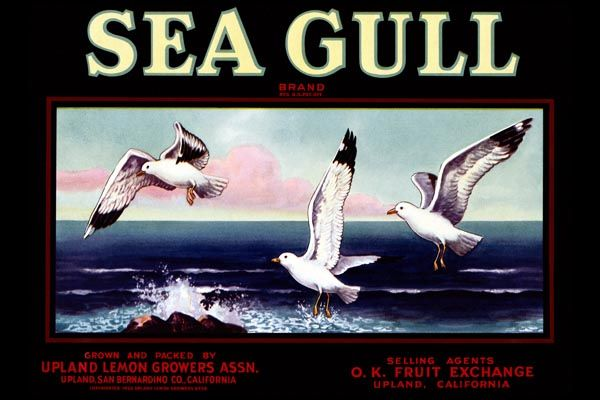 168. Иностранный плакат: Sea Gull brand