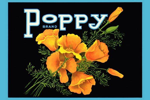 169. Иностранный плакат: Poppy brand