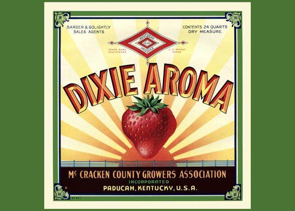 182. Иностранный плакат: Dixie Aroma