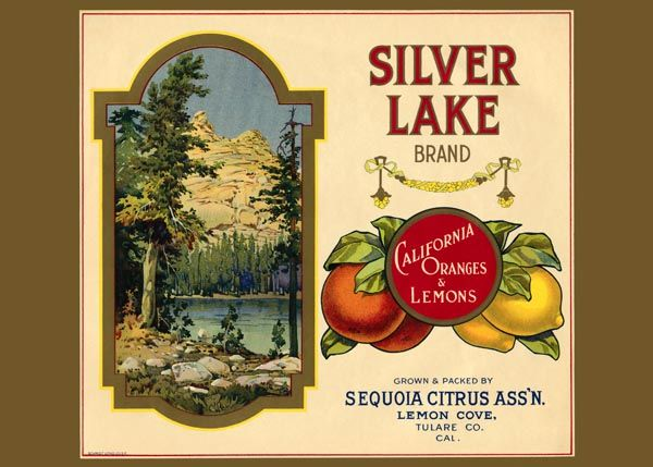 186. Иностранный плакат: Silver Lakel brand