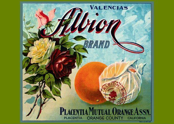 187. Иностранный плакат: Allion brand