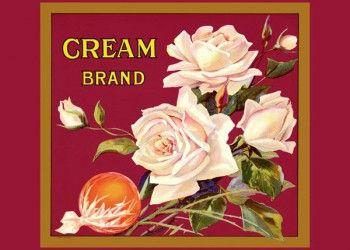 190. Иностранный плакат: Cream brand
