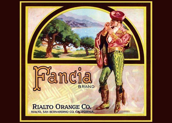 196. Иностранный плакат: Fansia brand