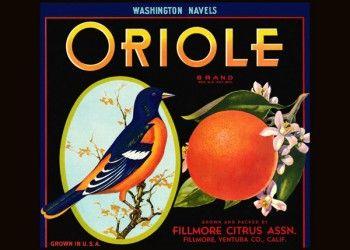 197. Иностранный плакат: Oriole brand