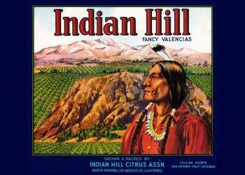 203. Иностранный плакат: Indian Hill fancy valencias