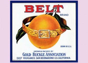 204. Иностранный плакат: Belt brand