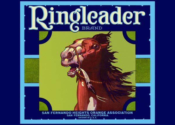 207. Иностранный плакат: Ringleader brand