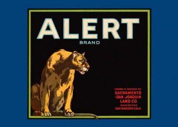 213. Иностранный плакат: Alert brand