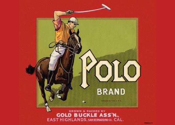 219. Иностранный плакат: Polo brand