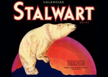 232. Иностранный плакат: Stalwart brand