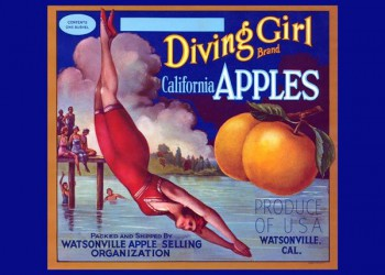 236. Иностранный плакат: Diving Girl brand