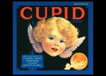 237. Иностранный плакат: Cupid brand