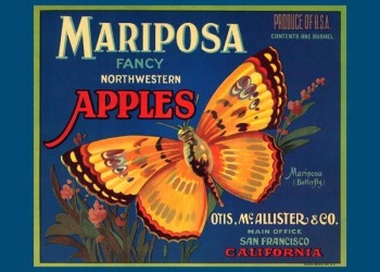 239. Иностранный плакат: Mariposa fancy northwestern Apples