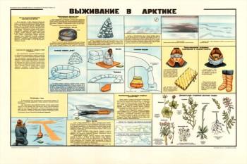 0171. Военный ретро плакат: Выживание в Арктике
