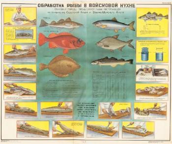 0443. Военный ретро плакат: Обработка рыбы в войсковой кухне